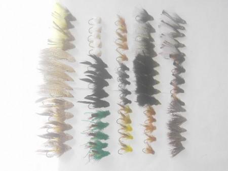 75 verschiedene durchorganisierter Fliegen Fischen
