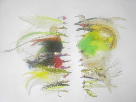 50 Assorted Saltwater fly fishing flies