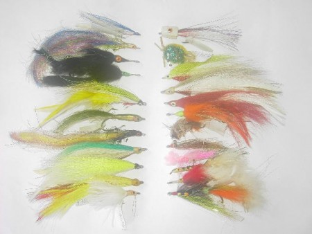 100 Assorted Saltwater fly fishing flies