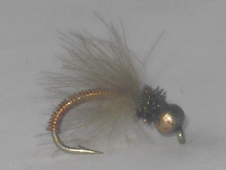 B.h metallic caddis copper