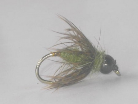 B.h pd nymph olive