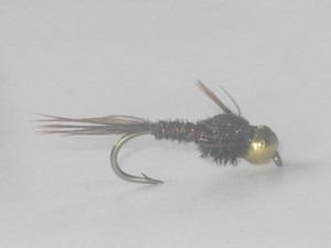 B.h pheasant tail natural