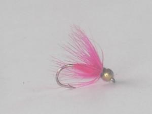 B.h pink spider