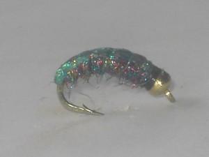 B.h rainbow caddis