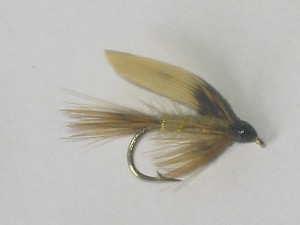 American march brown