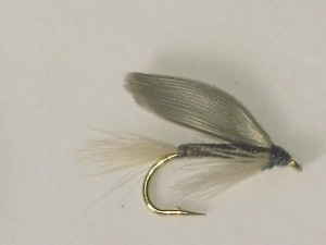 Blue quill wet fly