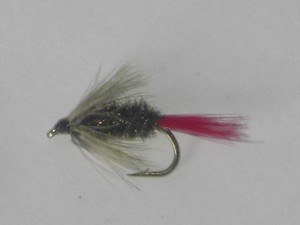 Red hackle peacock wet fly