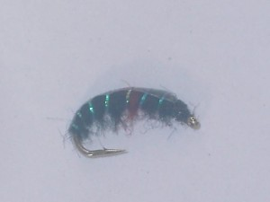 Czech nymph 6
