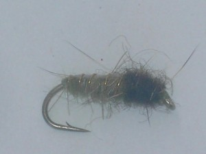 Electric caddis olive