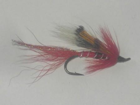 Alley shrimp red